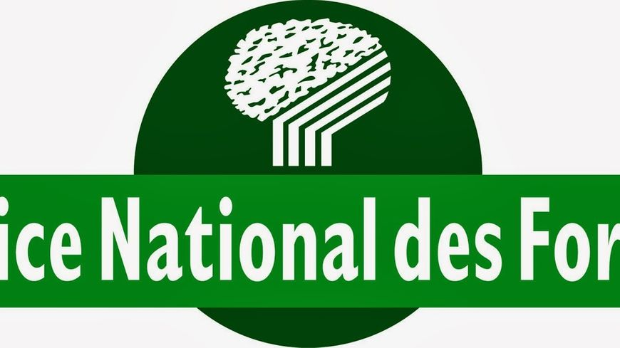 France bleu gironde avec l 39 office national des for ts - Office national des forets ...