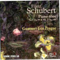 Trio avec piano en Mi bémol Maj op 100 D 929 : Andante con moto