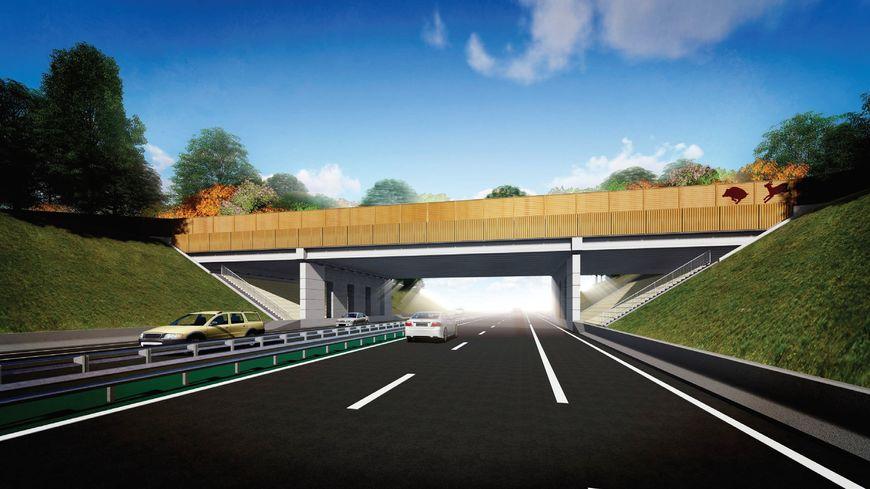 Dordogne un pont pour les animaux va voir le jour au for Portent of passage 1