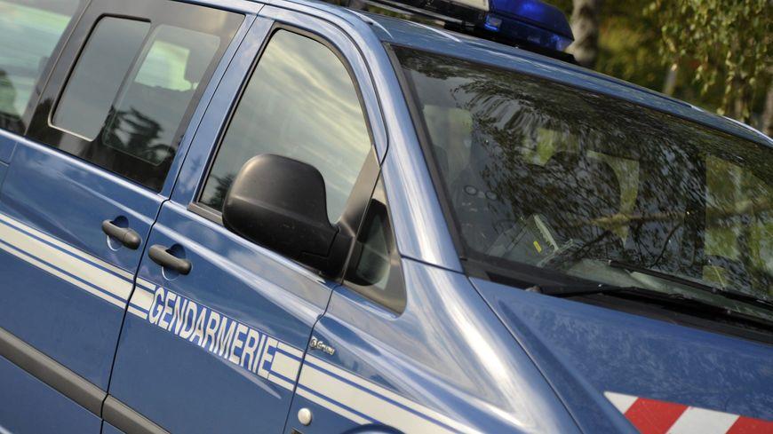 Une équipe cynophile de gendarmerie de Gramat, dans le Lot, recherche le corps de Narumi en forêt de Chaux dans le Jura