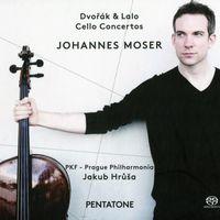 Concerto n°2 en si min op 104 B 191 : Adagio ma non troppo