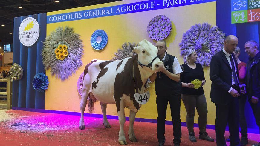Photos salon de l 39 agriculture 2017 le doubs remporte - Salon de l agriculture resultat concours ...