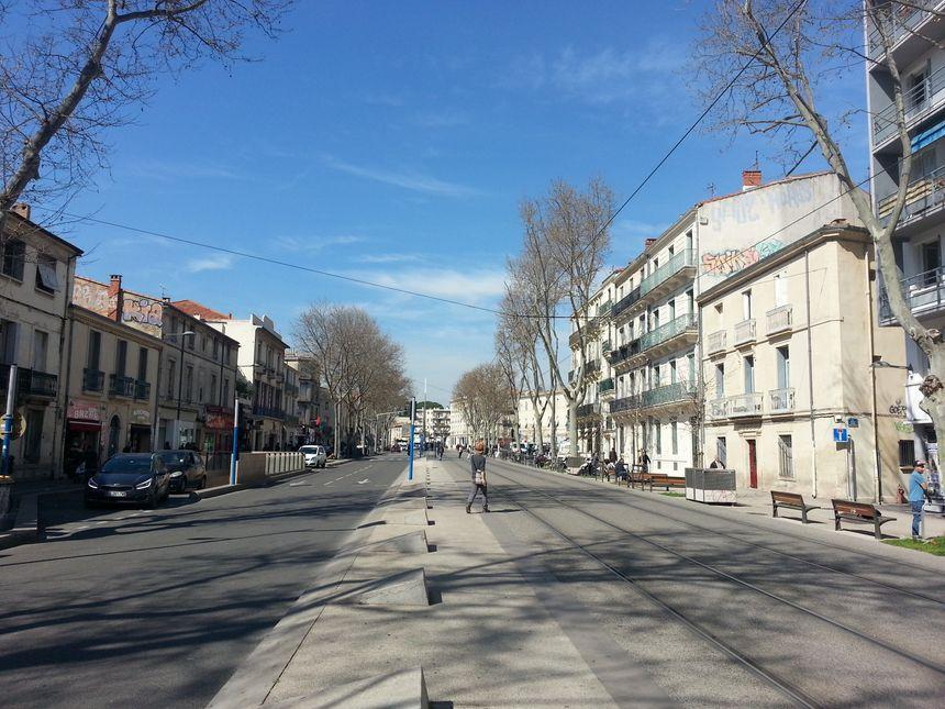Le Cours Gambetta, l'un des 3 secteurs visés par l'arrêté. - Radio France