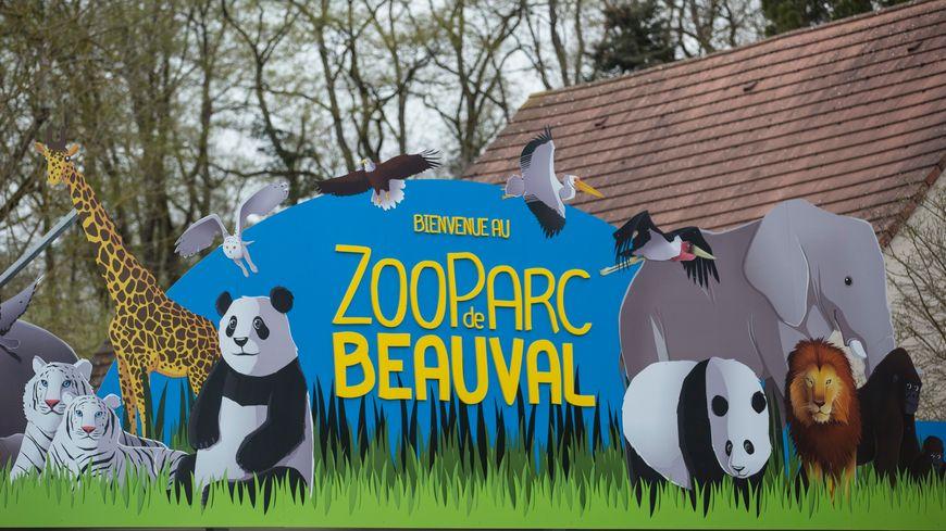 Le zoo de beauval attend jusqu 39 visiteurs pour ce for Chambre zoo de beauval