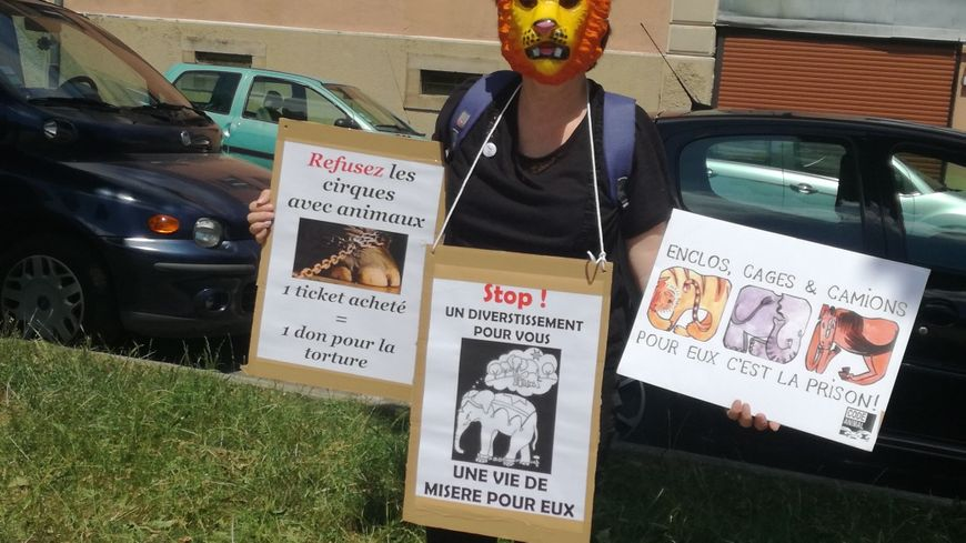 Les militants de l'Association Défense Animale Belfort devant l'entrée du cirque Pinder à Belfort