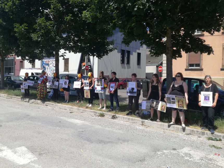 Les militants de l'association Défense Animale Belfort devant l'entrée du cirque Pinder à Belfort - Radio France