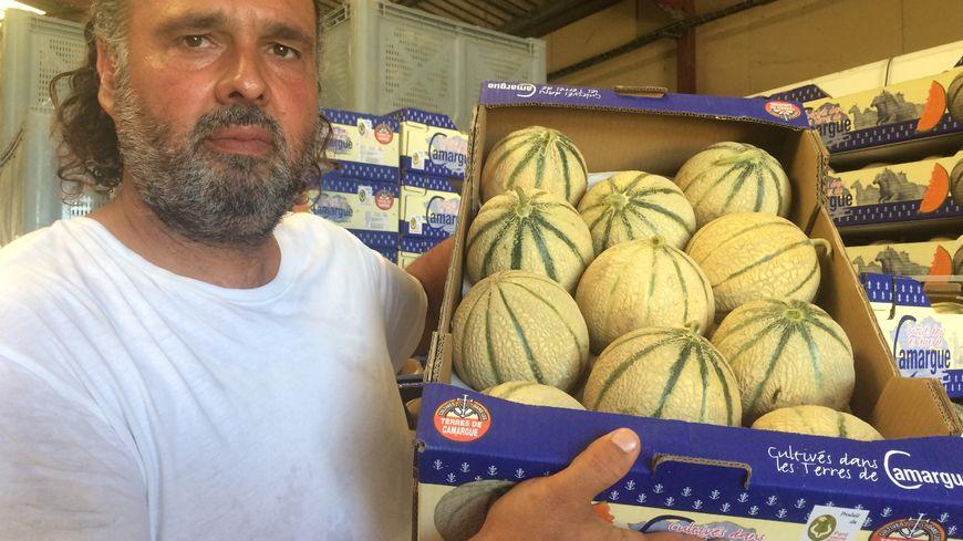 Samuel Solans a encore 80 tonnes de melons en stock