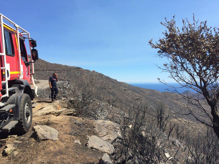 2000 hectares de végétation sont partis en fumée en l'espace de quelques heures - Radio France